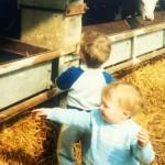 Gordon Farm Photo