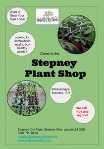 plant shop flyer